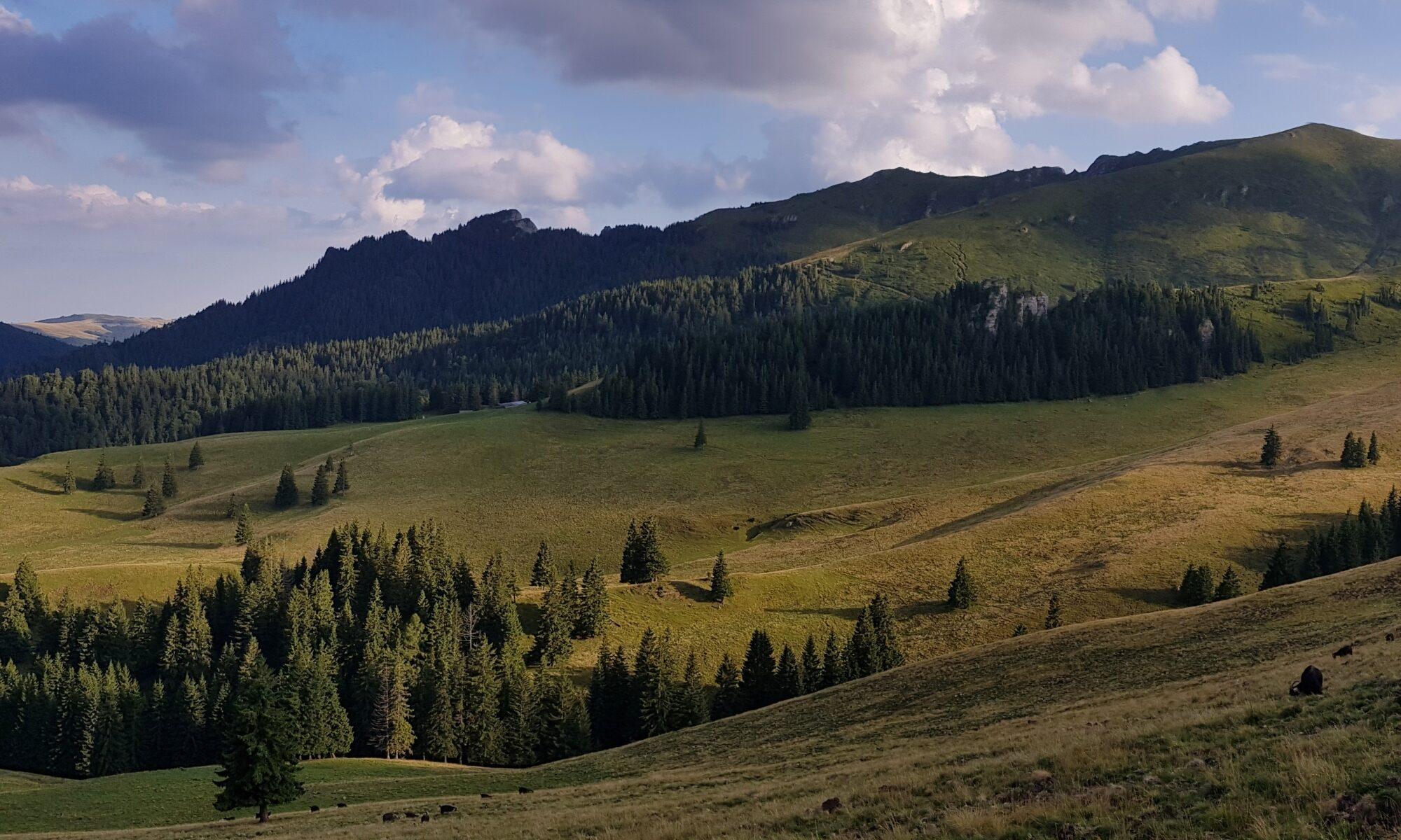 Eastern Ciucaş